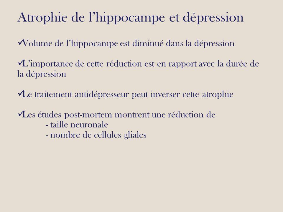 Atrophie de l'hippocampe et dépression