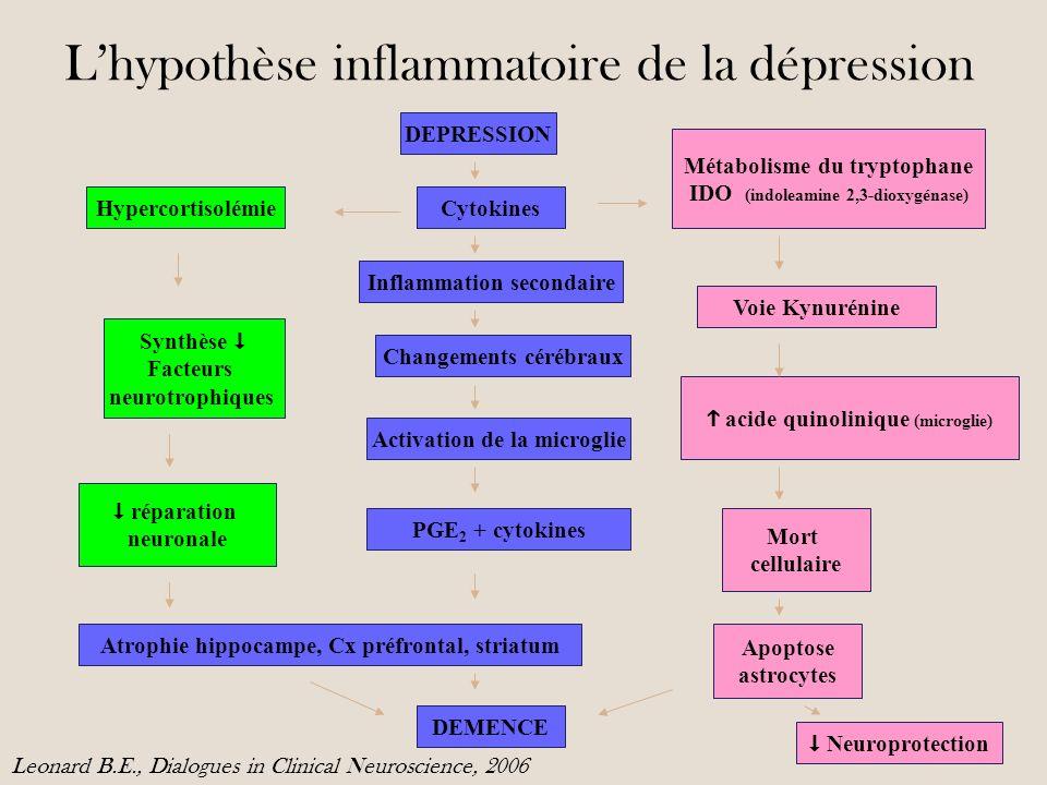 L'hypothèse inflammatoire de la dépression