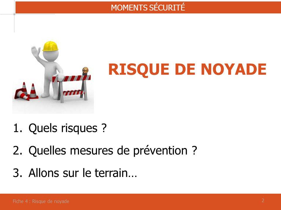 RISQUE DE NOYADE Quels risques Quelles mesures de prévention