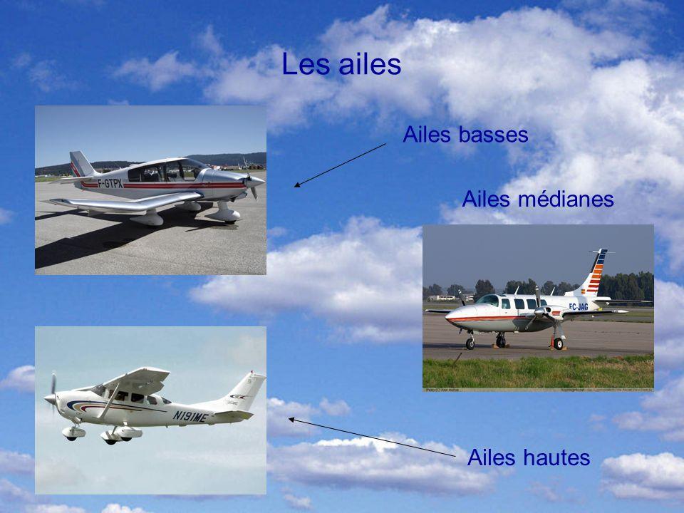 Les ailes Ailes basses Ailes médianes Ailes hautes