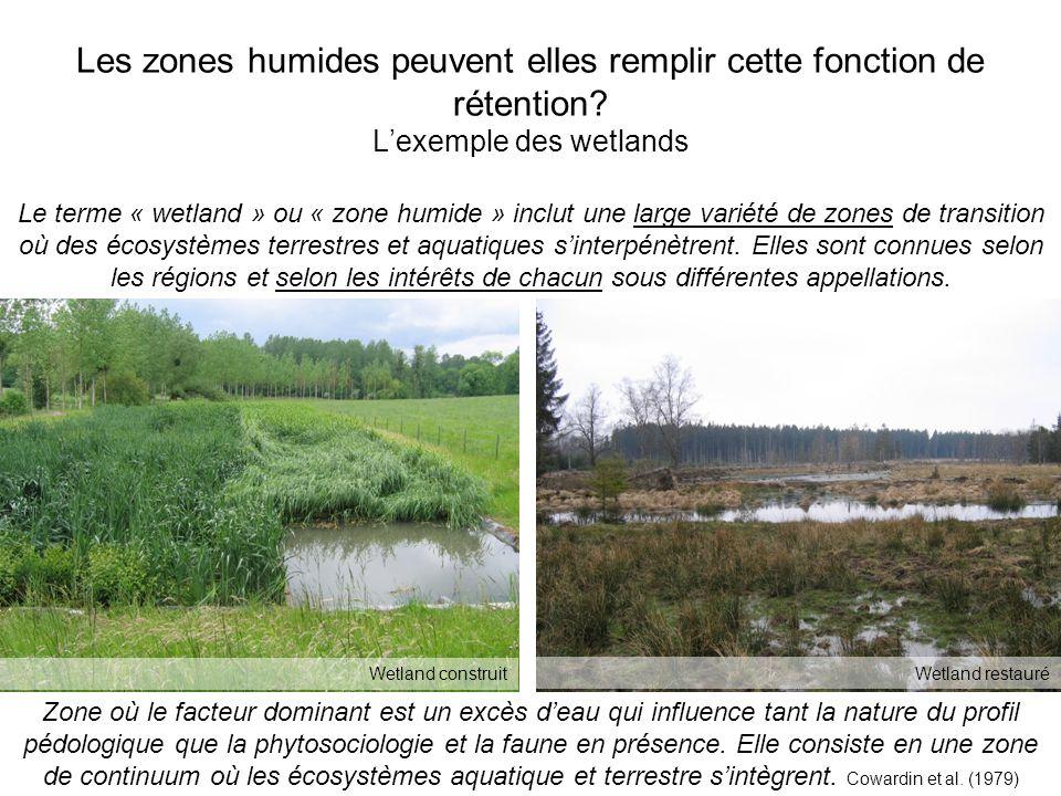 Les zones humides peuvent elles remplir cette fonction de rétention