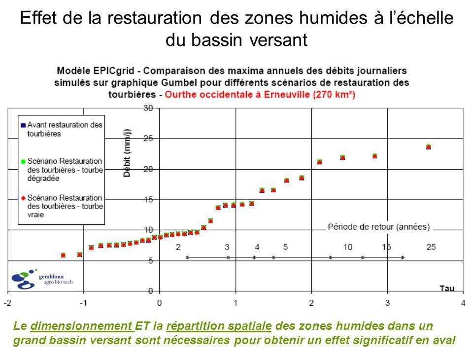 Effet de la restauration des zones humides à l'échelle du bassin versant