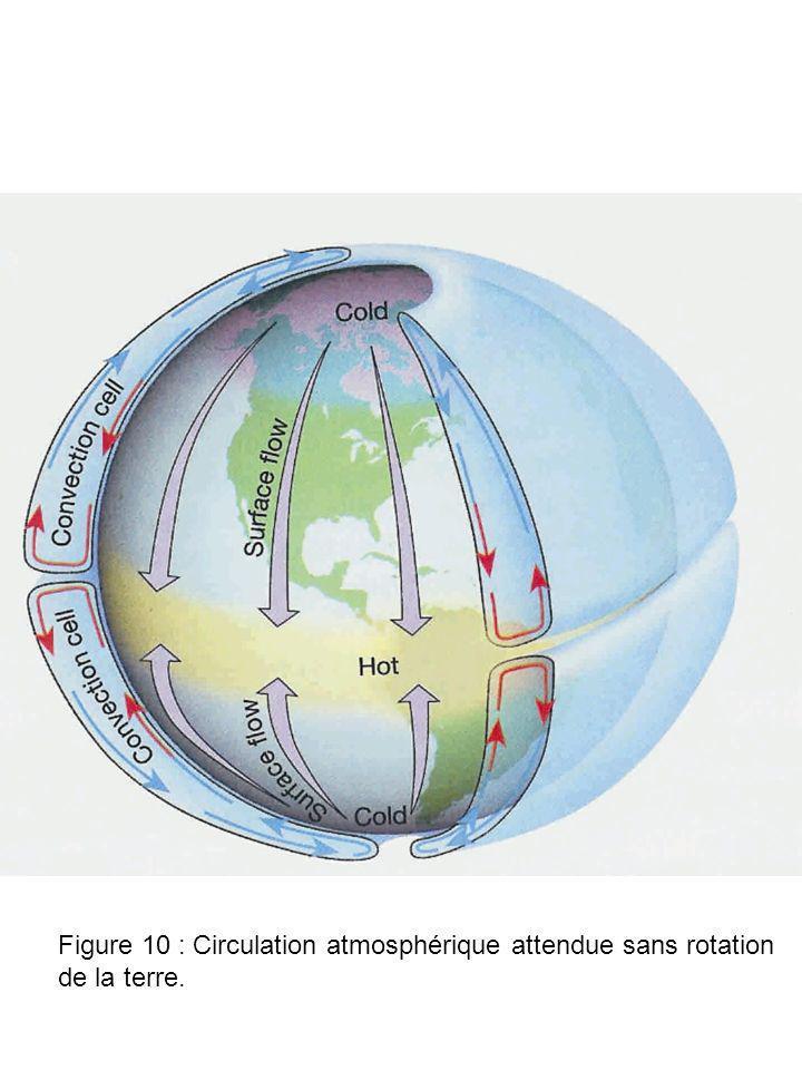 Figure 10 : Circulation atmosphérique attendue sans rotation de la terre.