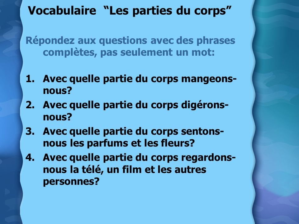 Vocabulaire Les parties du corps