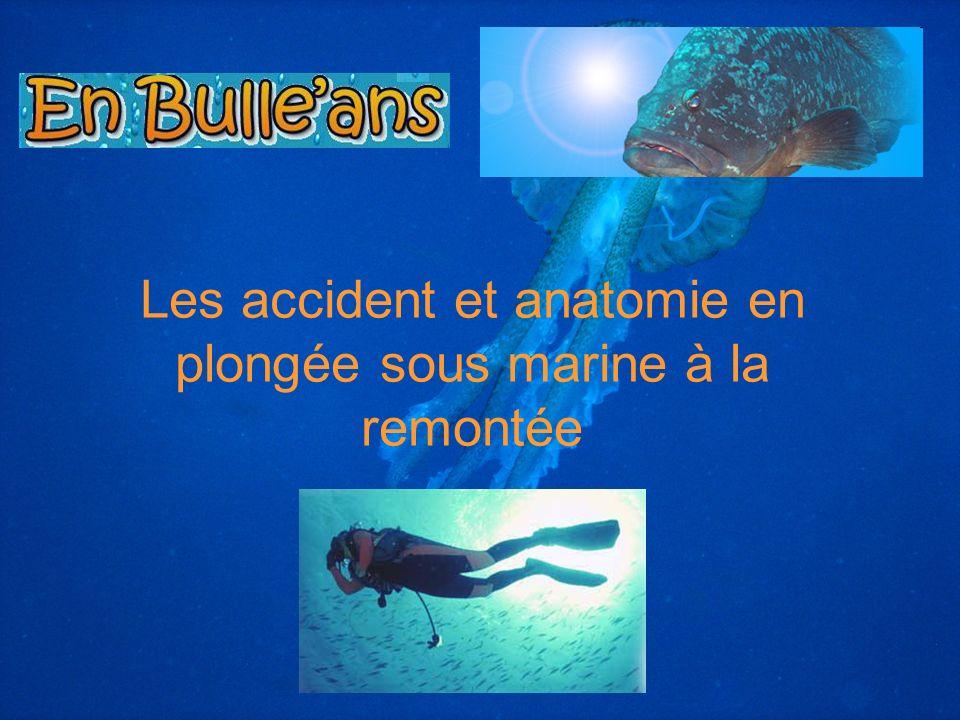 Les accident et anatomie en plongée sous marine à la remontée