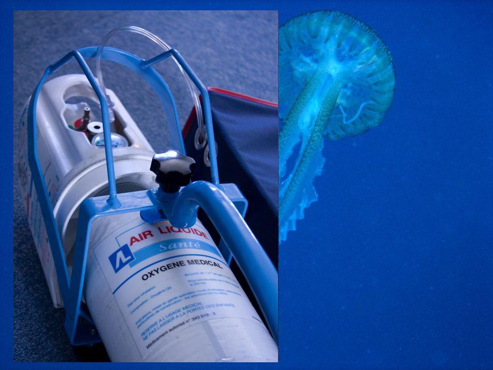 Prise en charge d'un plongeur victime d'un ADD