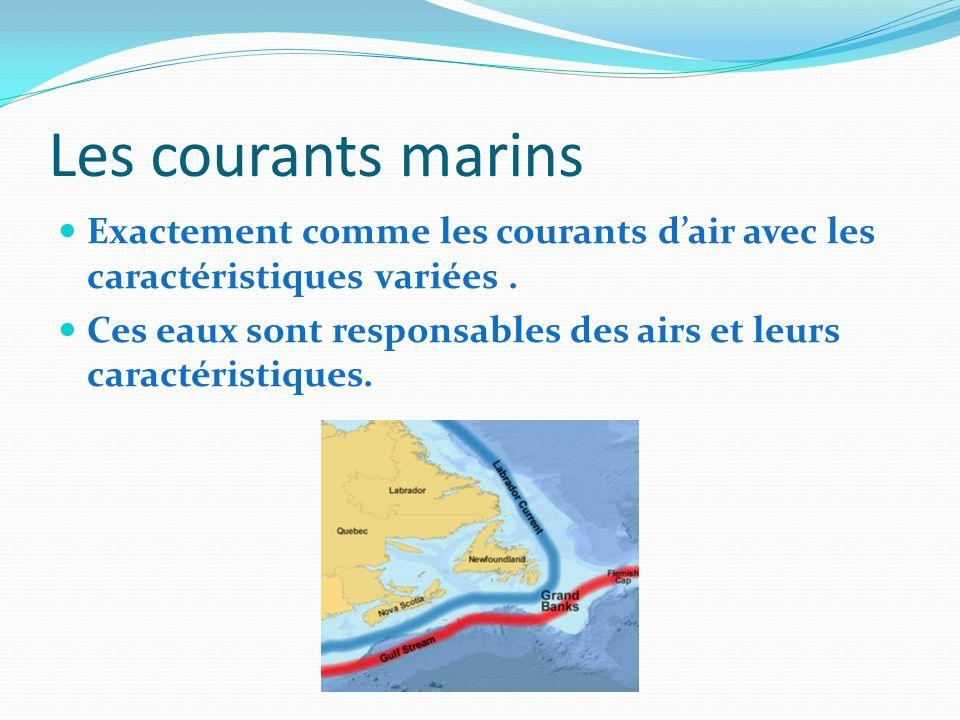 Les courants marins Exactement comme les courants d'air avec les caractéristiques variées .