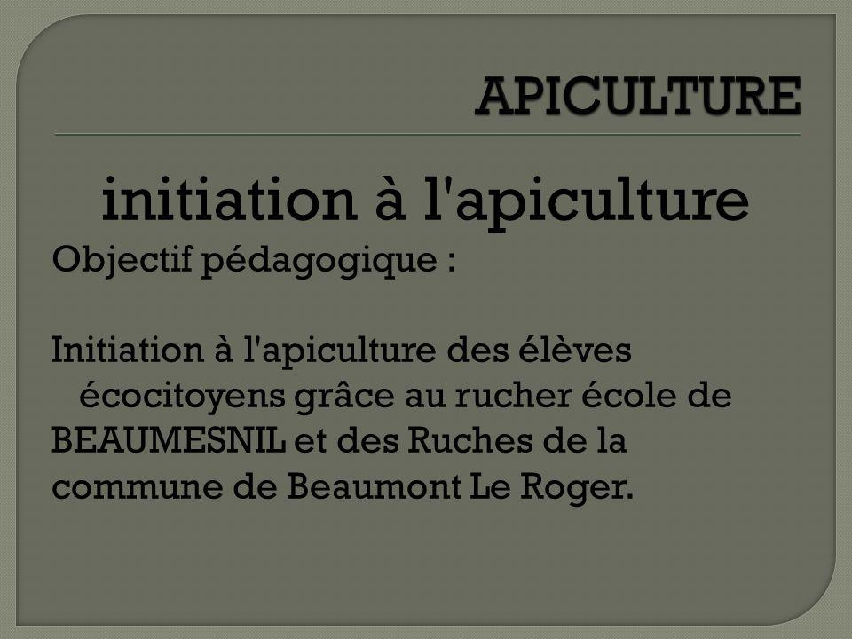 initiation à l apiculture