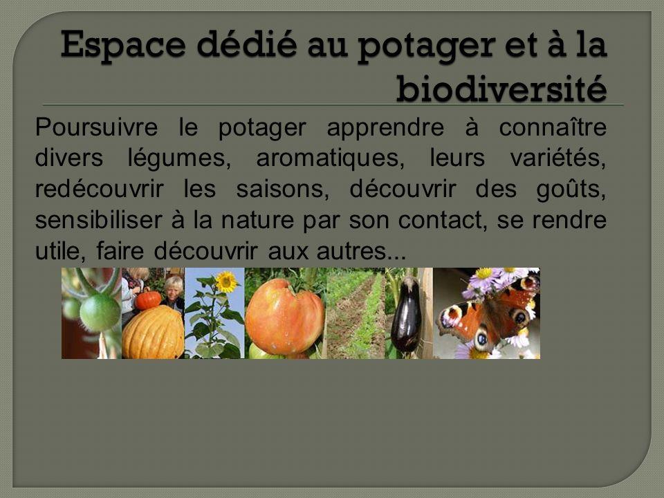 Espace dédié au potager et à la biodiversité