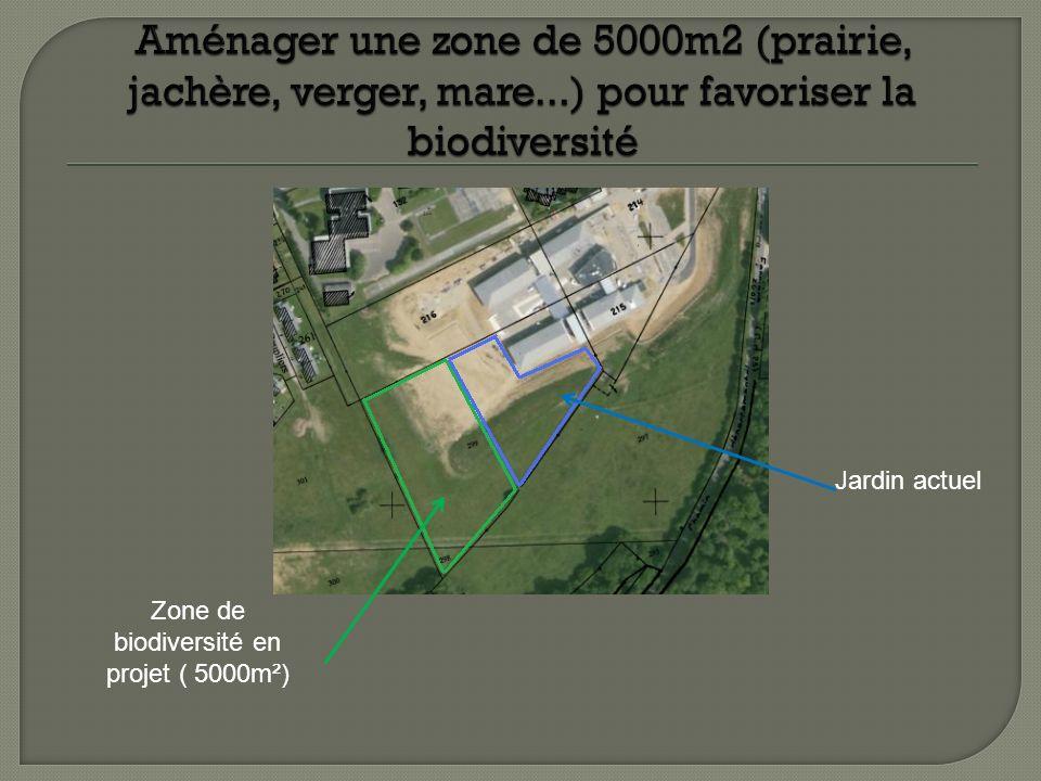 Zone de biodiversité en projet ( 5000m²)