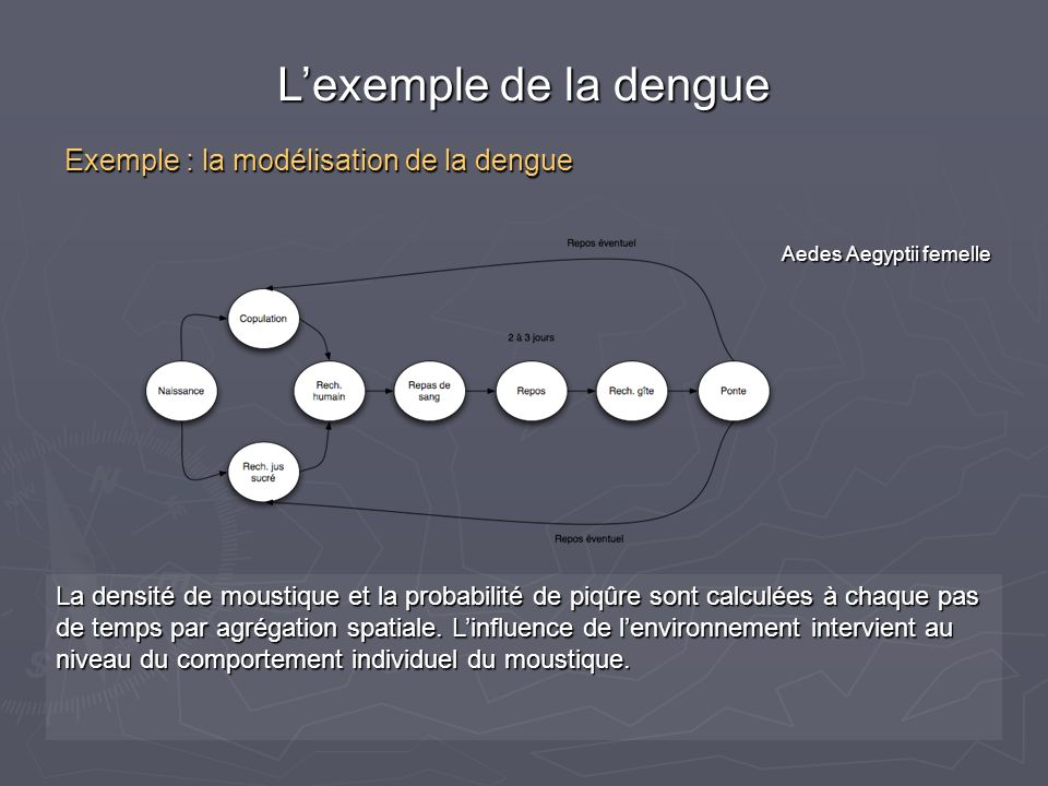 L'exemple de la dengue Exemple : la modélisation de la dengue