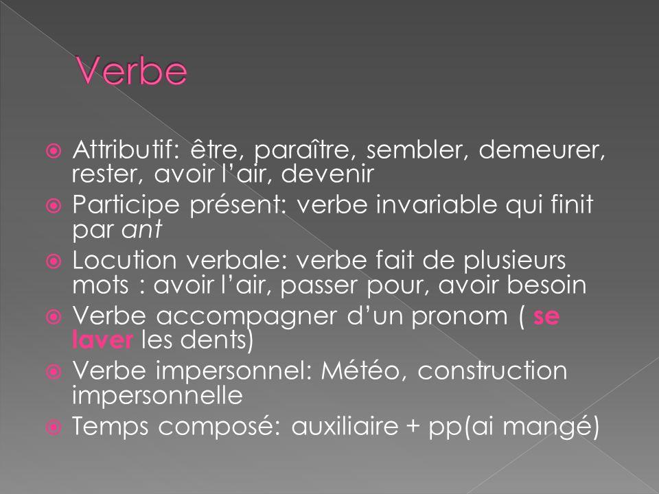 Verbe Attributif: être, paraître, sembler, demeurer, rester, avoir l'air, devenir. Participe présent: verbe invariable qui finit par ant.