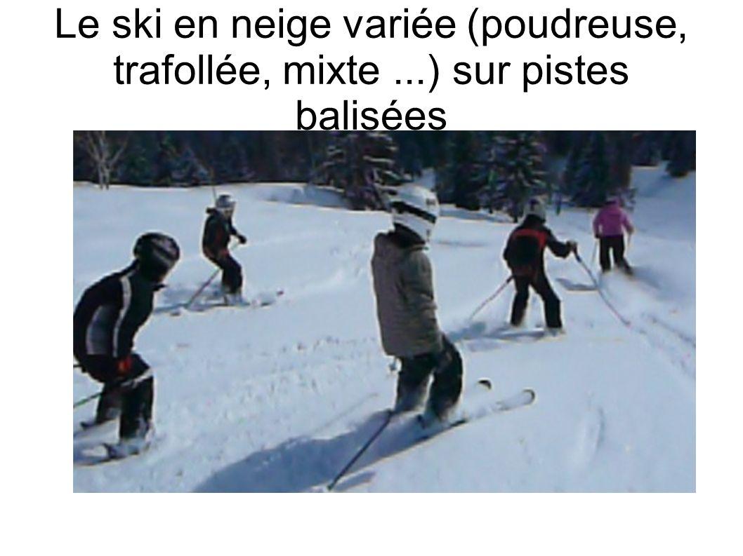 Le ski en neige variée (poudreuse, trafollée, mixte