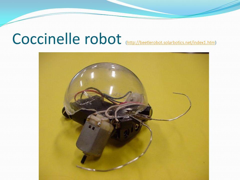 Coccinelle robot (http://beetlerobot.solarbotics.net/index1.htm)