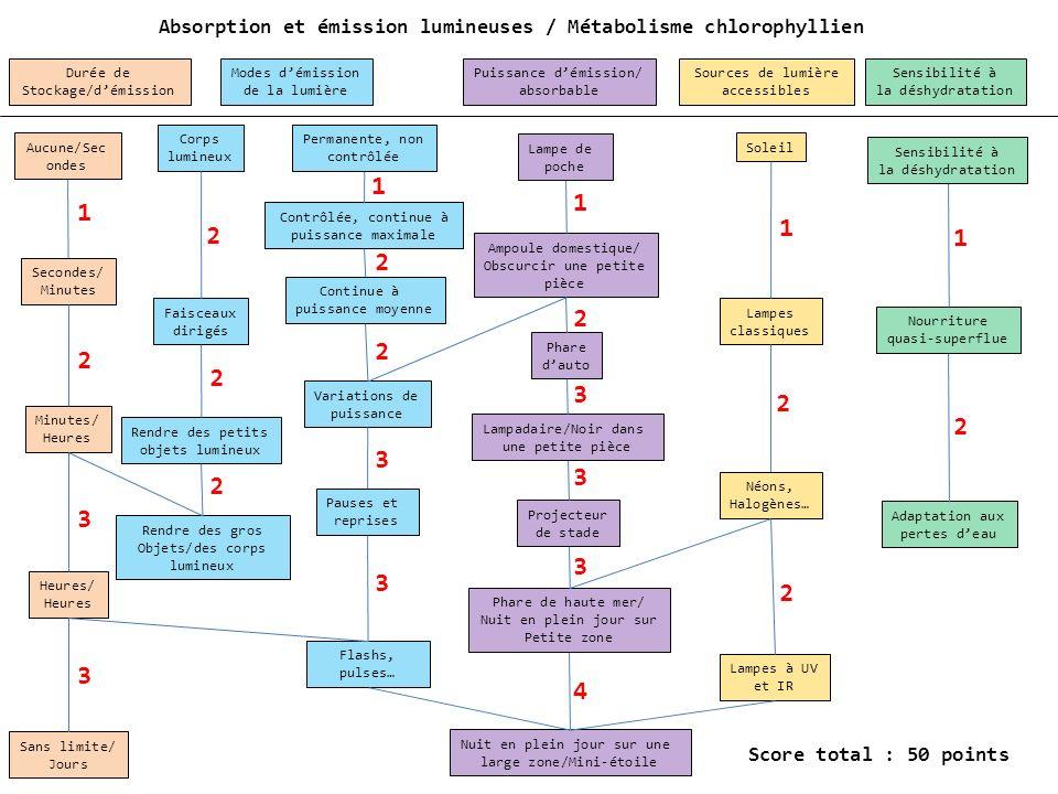 Absorption et émission lumineuses / Métabolisme chlorophyllien
