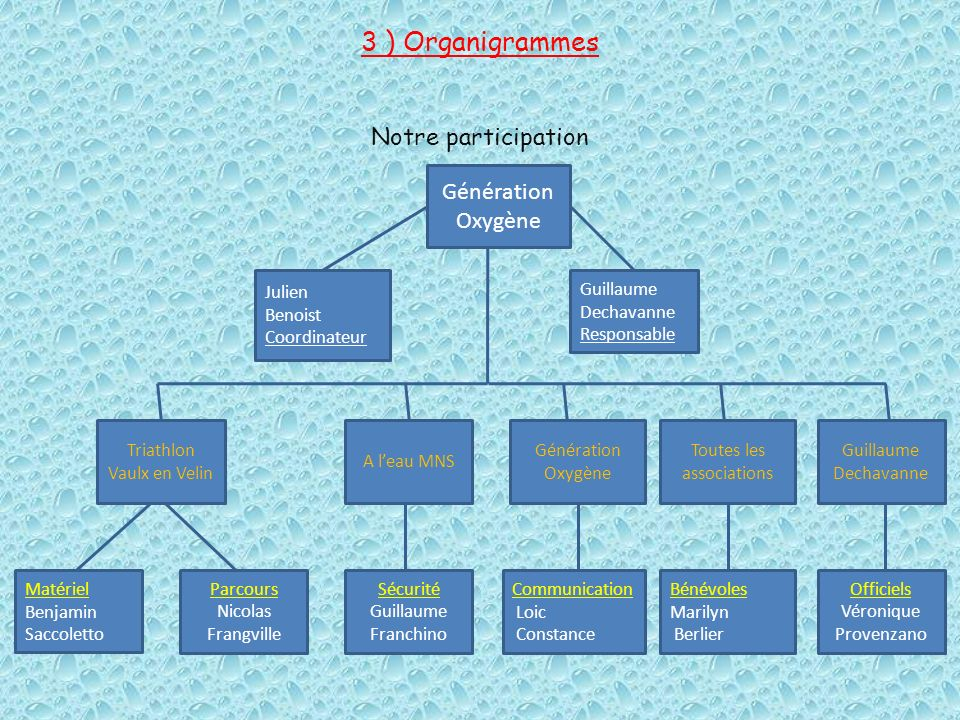 3 ) Organigrammes Notre participation