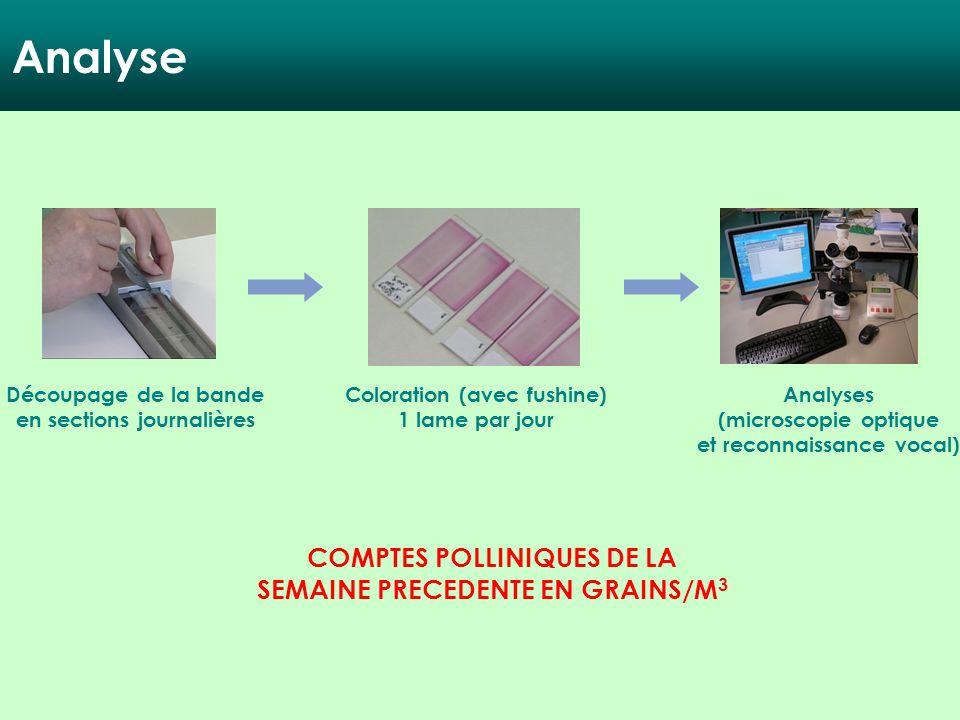 Analyse COMPTES POLLINIQUES DE LA SEMAINE PRECEDENTE EN GRAINS/M3