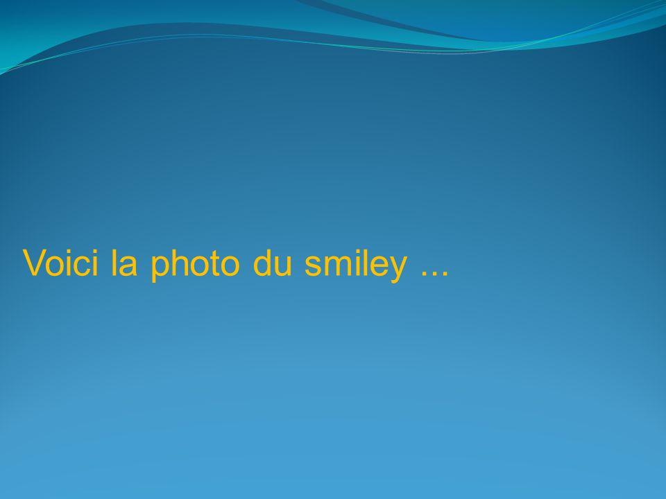 Voici la photo du smiley ...