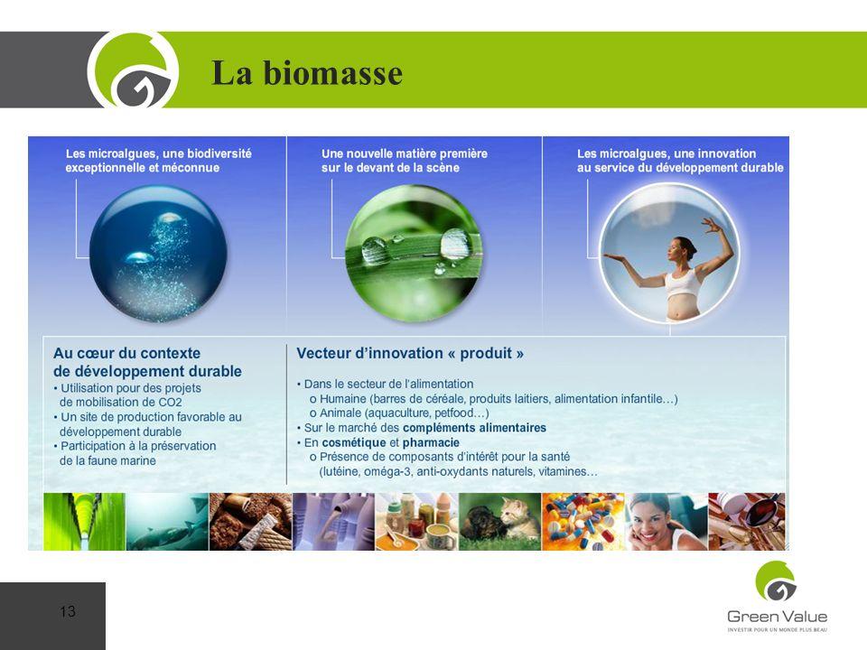 La biomasse Cap sur la Performance
