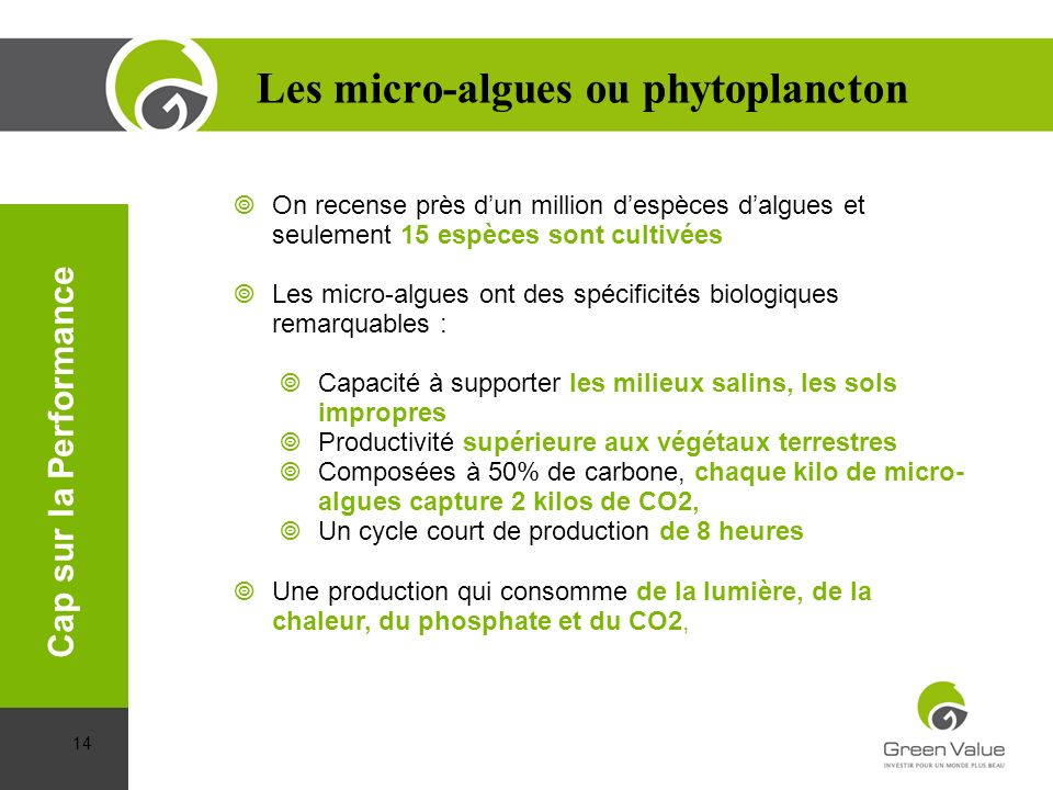 Les micro-algues ou phytoplancton