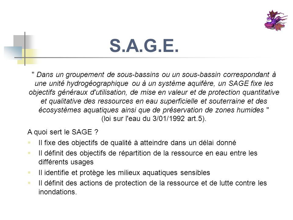 S.A.G.E.
