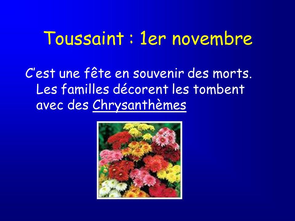 Toussaint : 1er novembre