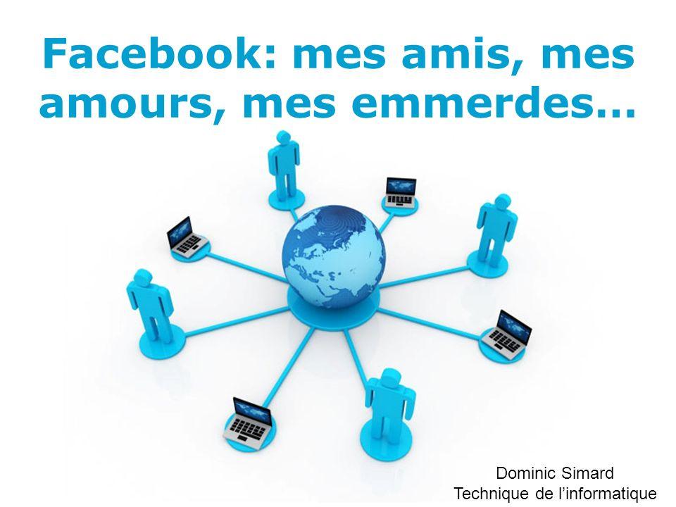 Facebook: mes amis, mes amours, mes emmerdes…