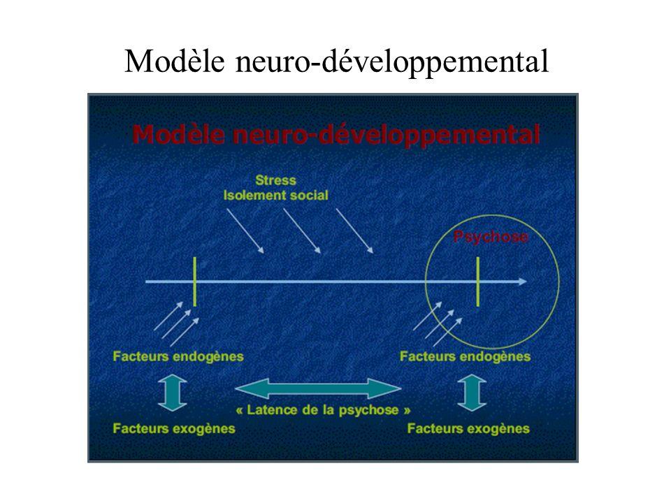 Modèle neuro-développemental