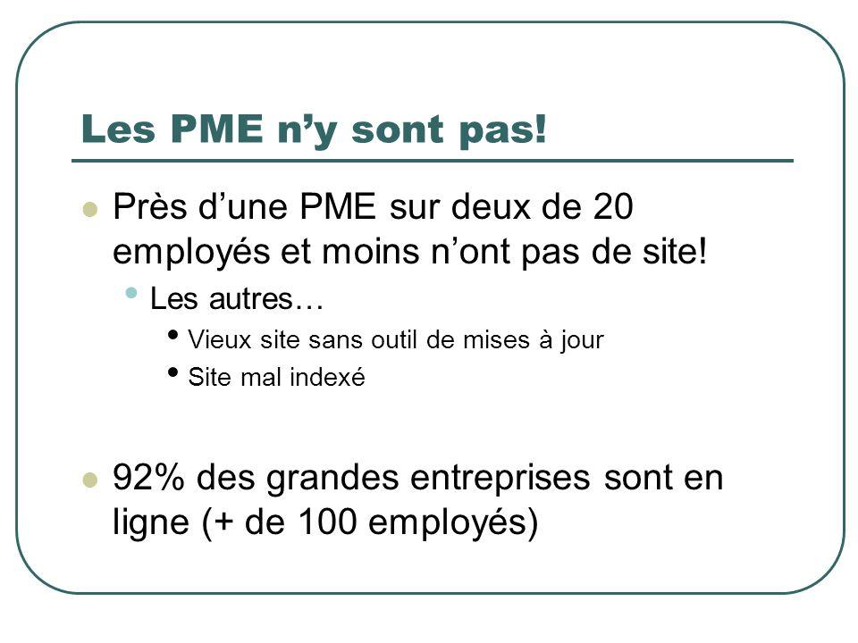 Les PME n'y sont pas! Près d'une PME sur deux de 20 employés et moins n'ont pas de site! Les autres…