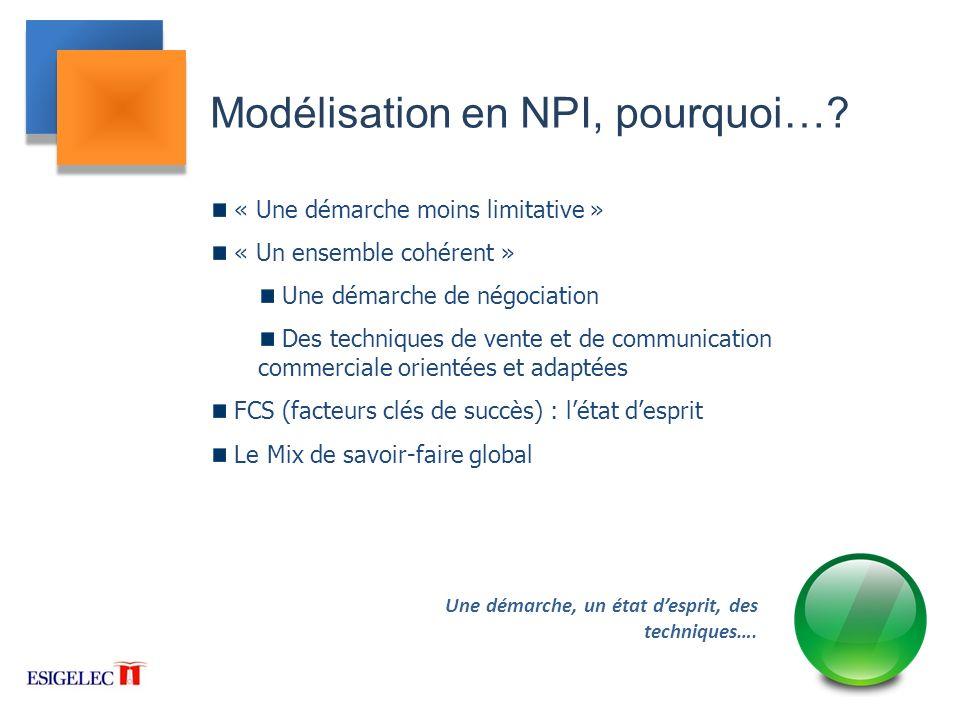 Modélisation en NPI, pourquoi…