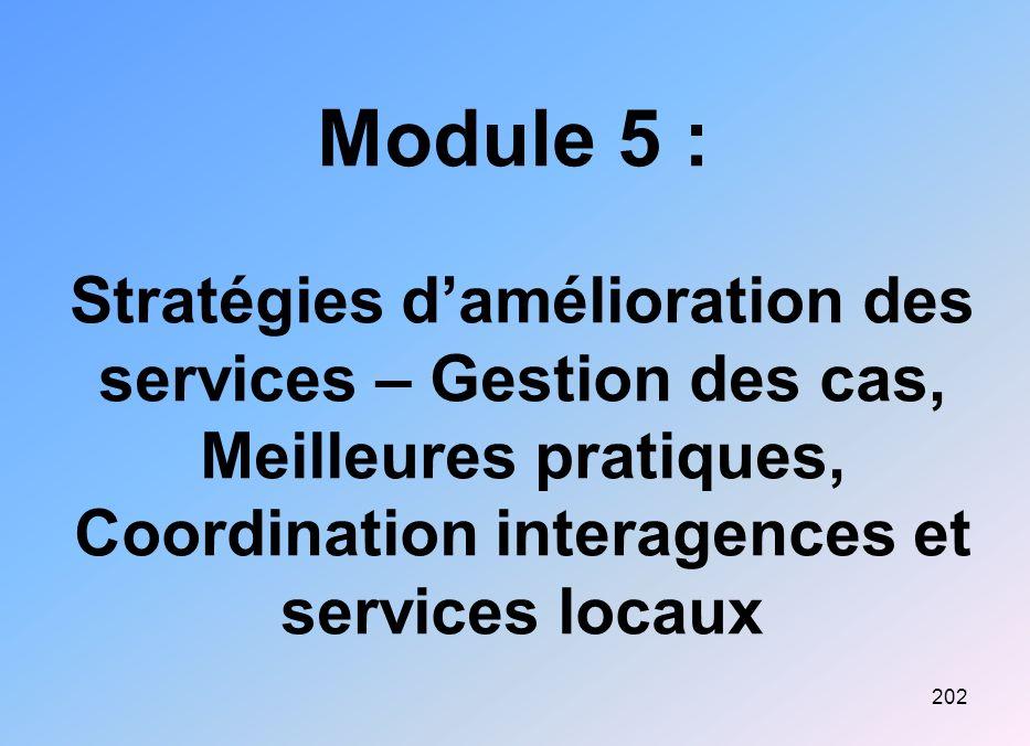 Module 5 : Stratégies d'amélioration des services – Gestion des cas, Meilleures pratiques, Coordination interagences et services locaux