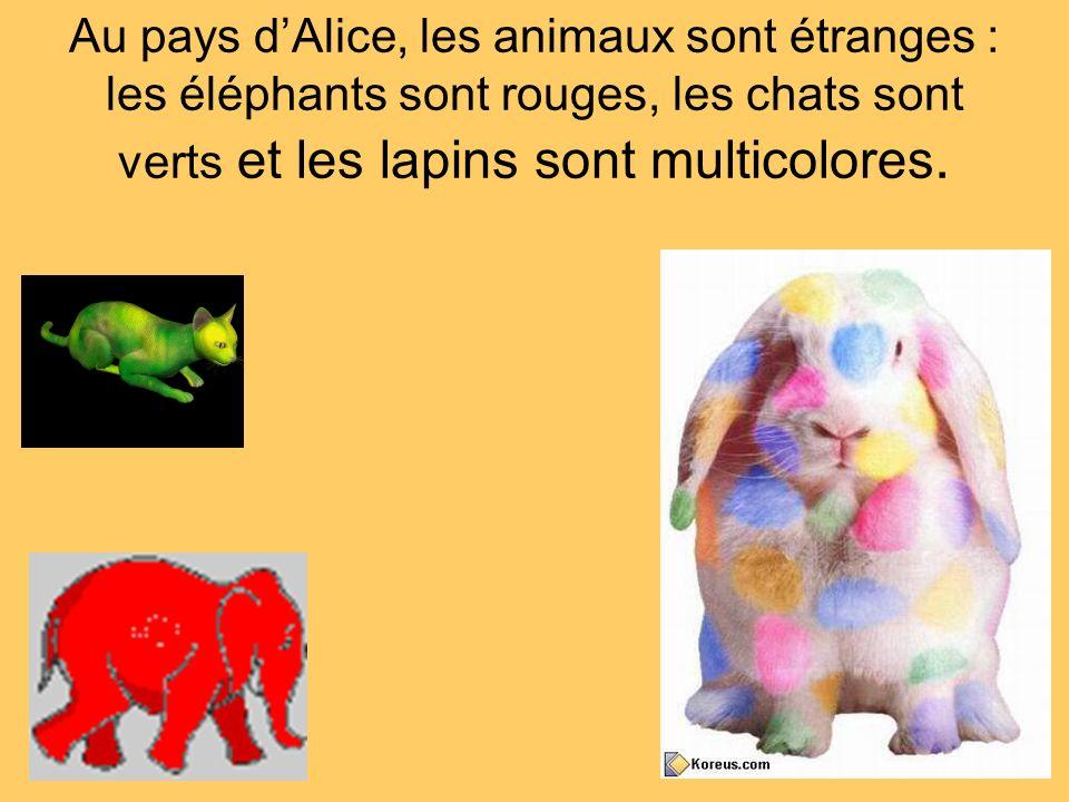 Au pays d'Alice, les animaux sont étranges : les éléphants sont rouges, les chats sont verts et les lapins sont multicolores.