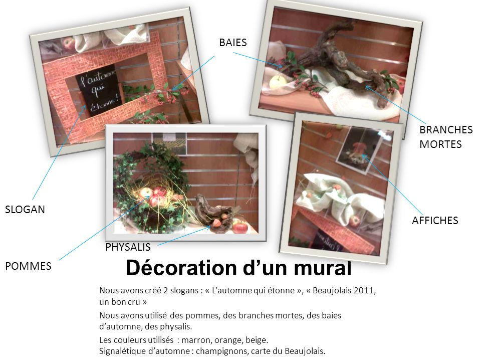 Décoration d'un mural BAIES BRANCHES MORTES SLOGAN AFFICHES PHYSALIS