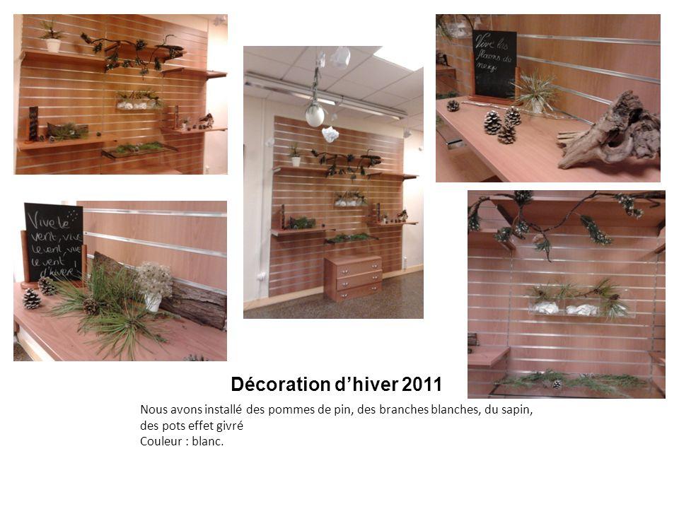 Décoration d'hiver 2011 Nous avons installé des pommes de pin, des branches blanches, du sapin, des pots effet givré Couleur : blanc.