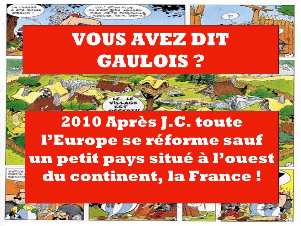 VOUS AVEZ DIT GAULOIS . 2010 Après J.C.