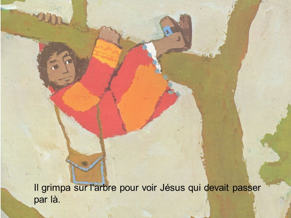 Il grimpa sur l'arbre pour voir Jésus qui devait passer par là.