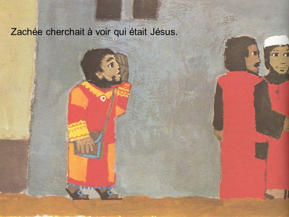 Zachée cherchait à voir qui était Jésus.