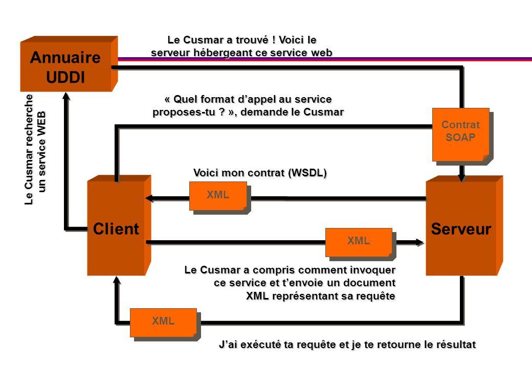 Serveur Annuaire UDDI Client