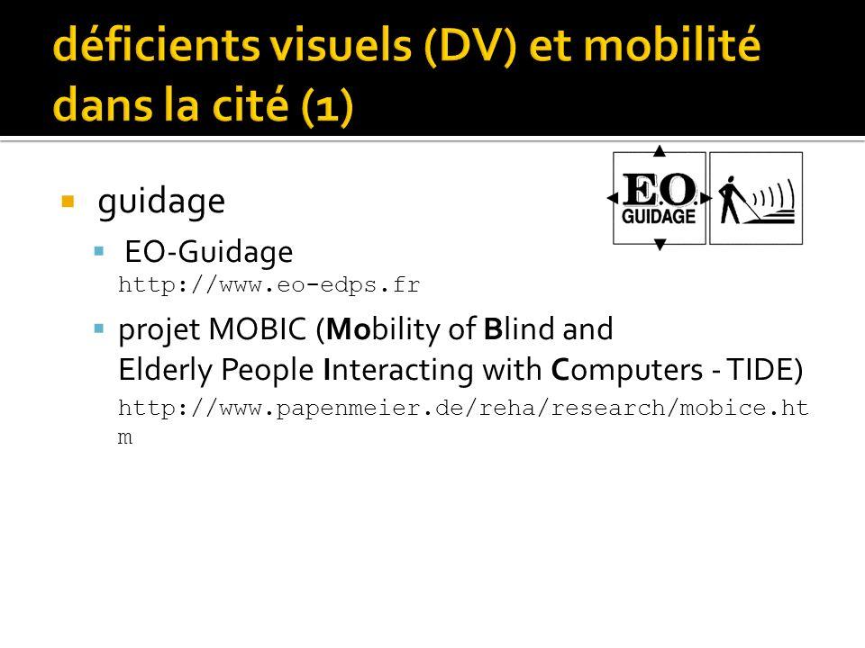 déficients visuels (DV) et mobilité dans la cité (1)