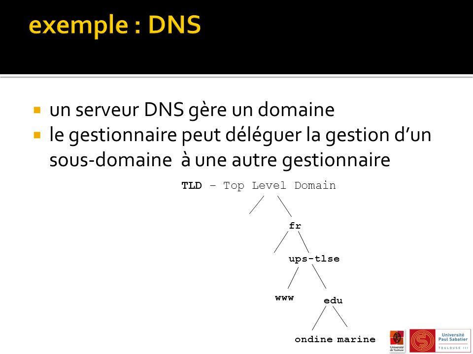 exemple : DNS un serveur DNS gère un domaine