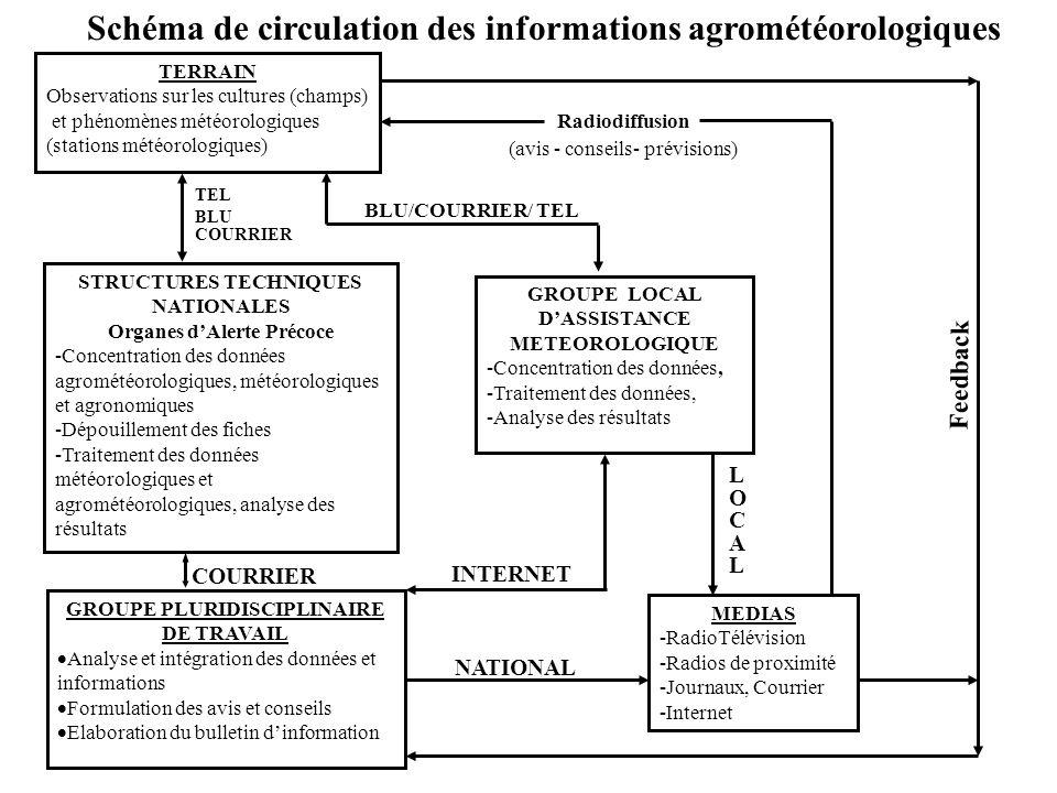 Schéma de circulation des informations agrométéorologiques