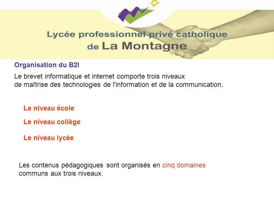 Organisation du B2I Le brevet informatique et internet comporte trois niveaux. de maîtrise des technologies de l information et de la communication.