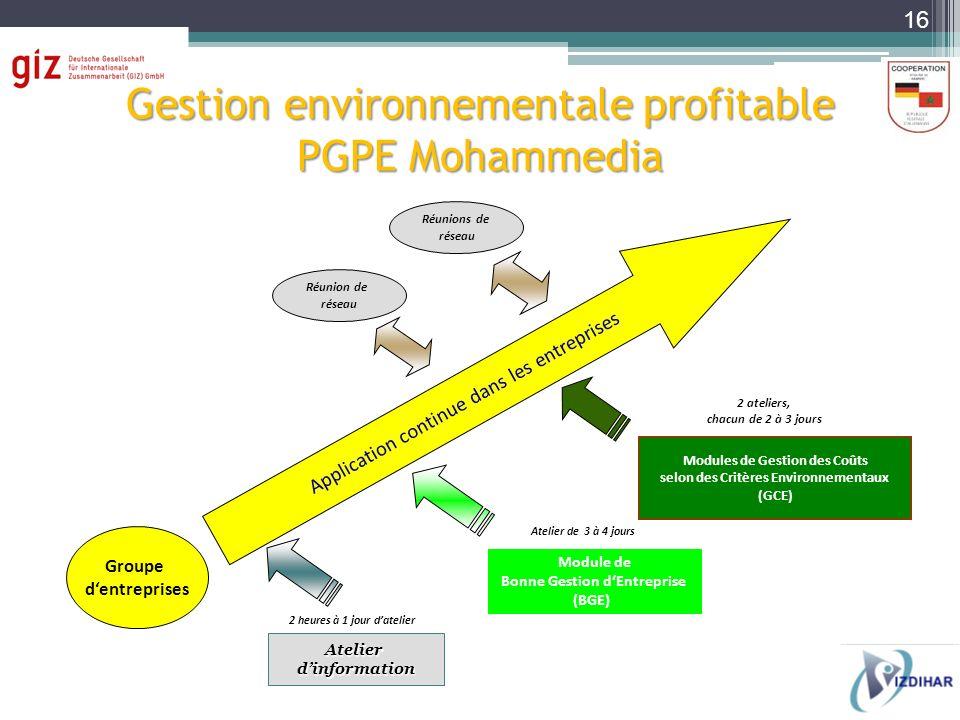 Gestion environnementale profitable PGPE Mohammedia