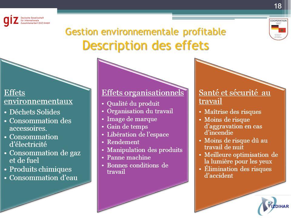 Gestion environnementale profitable Description des effets