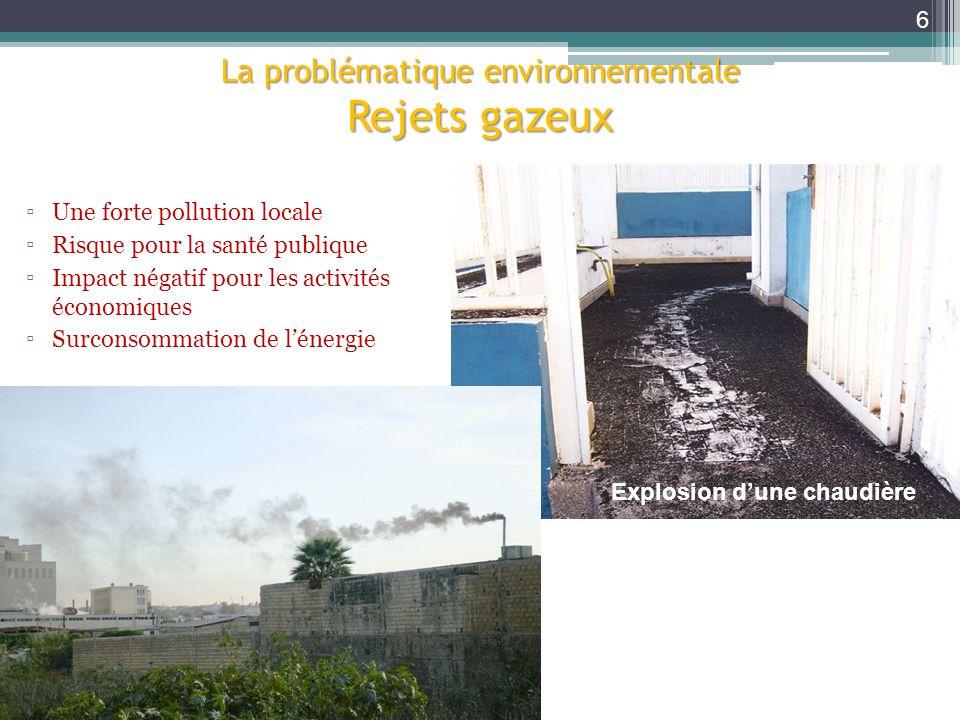 La problématique environnementale