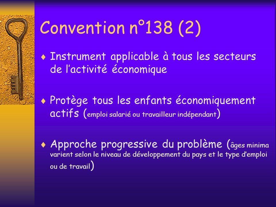 Convention n°138 (2) Instrument applicable à tous les secteurs de l'activité économique.