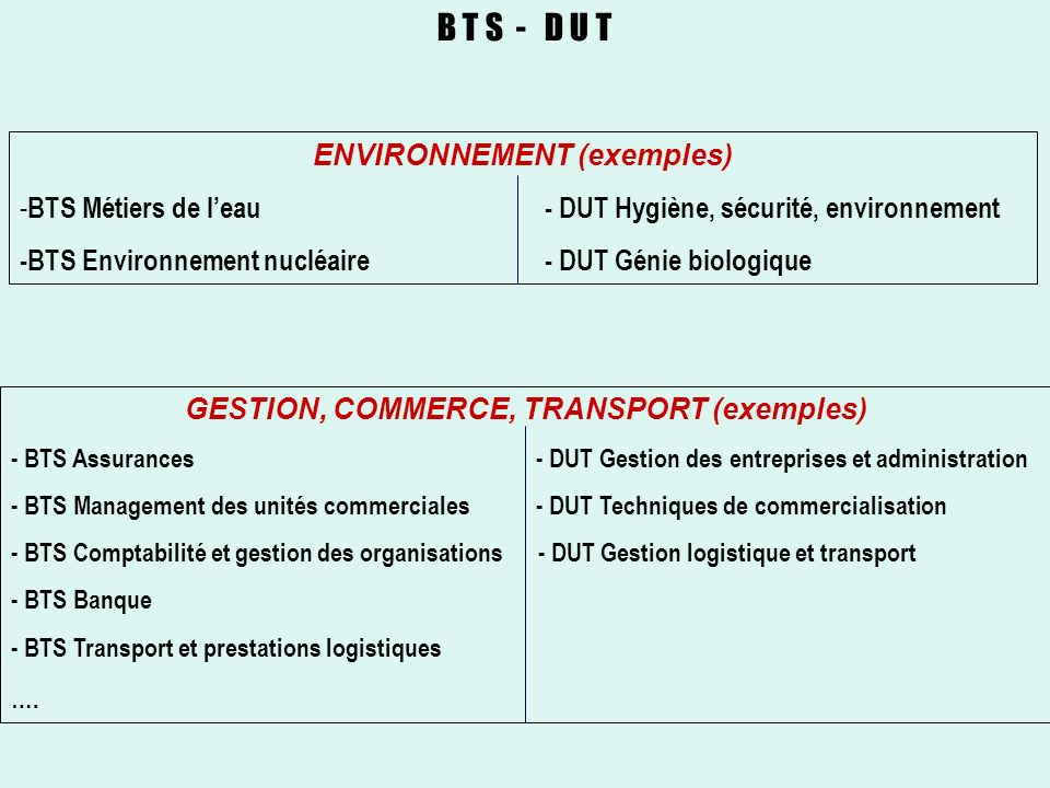 ENVIRONNEMENT (exemples) GESTION, COMMERCE, TRANSPORT (exemples)