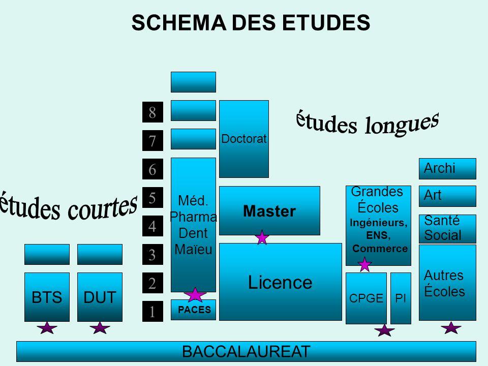 études longues études courtes SCHEMA DES ETUDES Licence Master 8 2 3 4