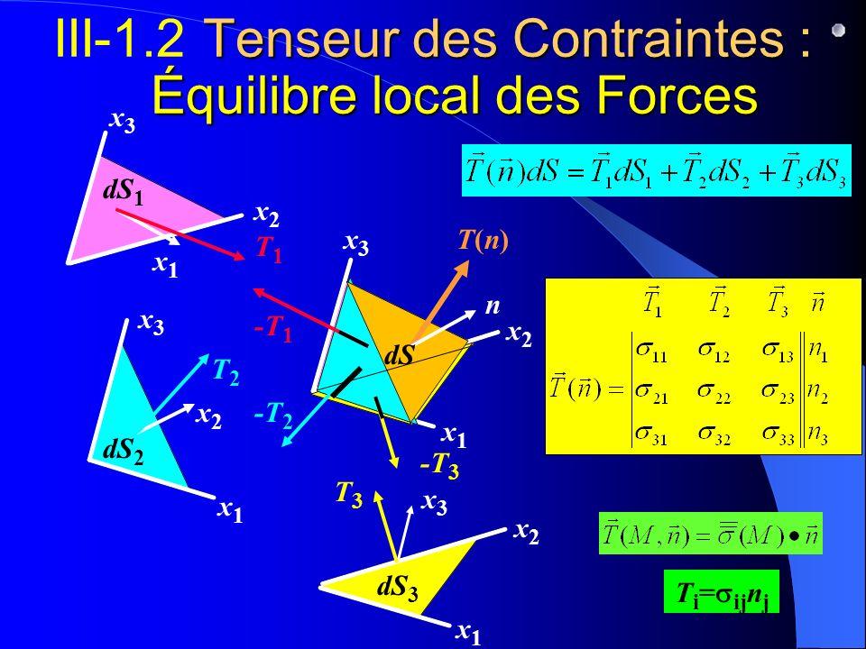 III-1.2 Tenseur des Contraintes : Équilibre local des Forces