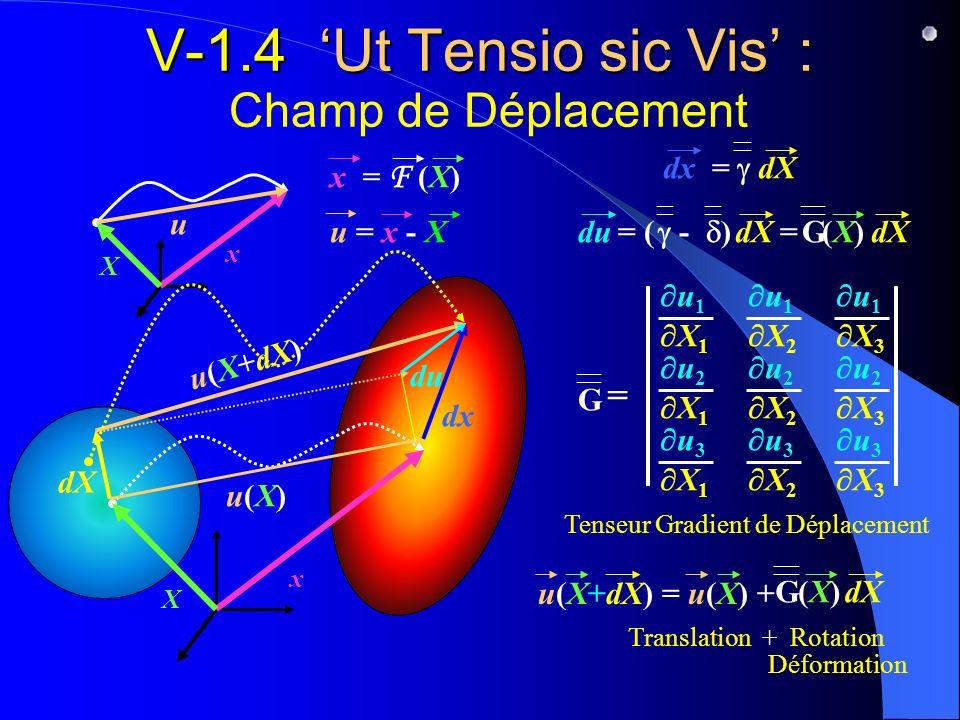 V-1.4 'Ut Tensio sic Vis' : Champ de Déplacement